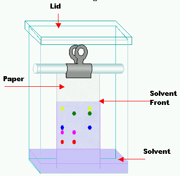 mechanism of separation in paper chromatography Paper chromatography (pc) – stationary phase is a special paper, either as such   phase is an adsorbent (usually silica gel) and the separation mechanism is.